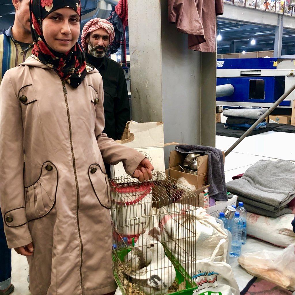 Une déportée de la Ghouta accompagnée de ses deux pigeons